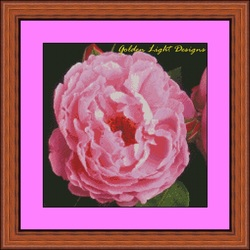 Free Cross Stitch Rose